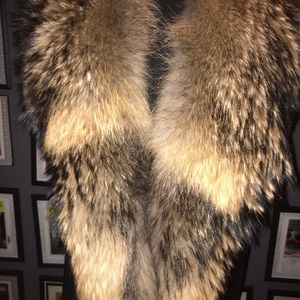 A Finnish Raccoon oversized Collar